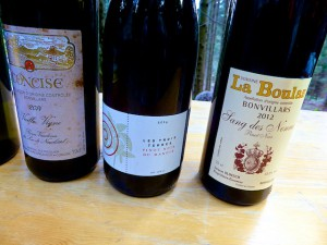 Schweiz Genferseegebiet Lavaux Bonvillars Wein