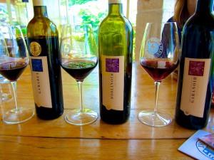 Schweiz Genferseegebiet Lavaux Grandvaux Weine